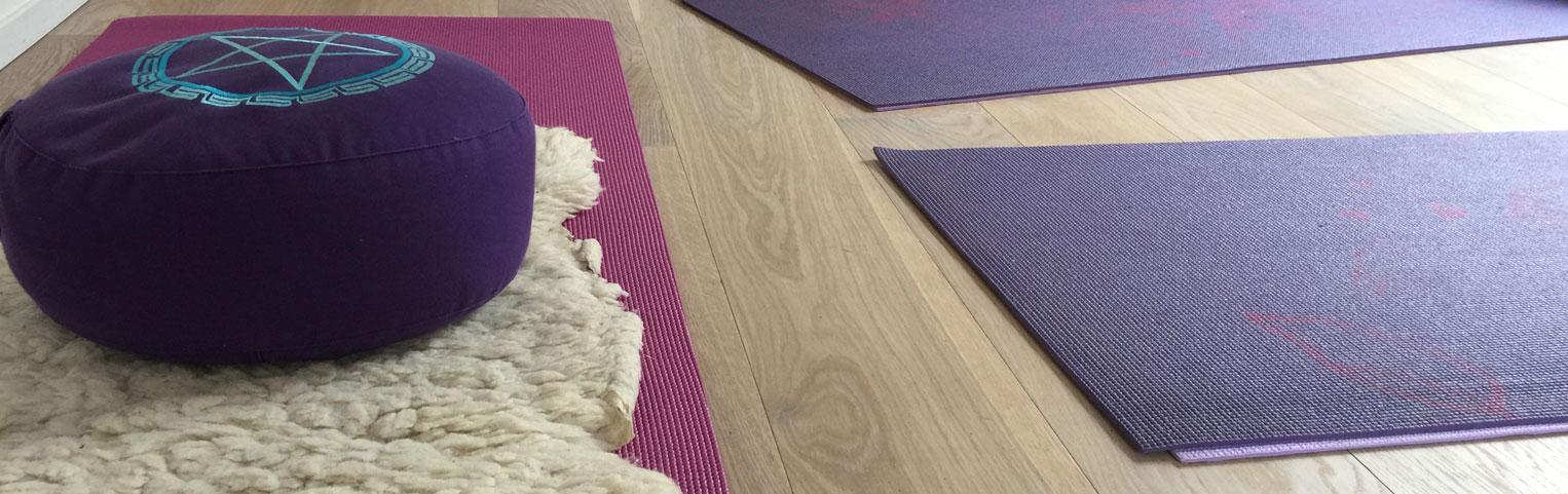 Nieuw: Dru Yoga voor beginners
